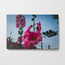 Flowers in Osaka Metal Print