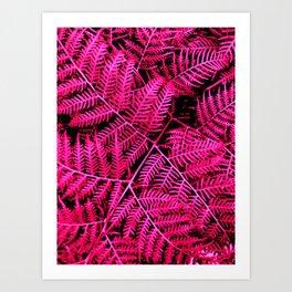 Pink Bracken Art Print