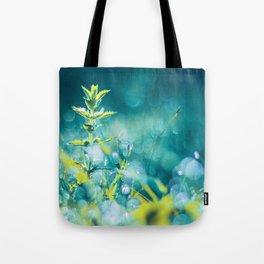 Crystal Fairies Tote Bag