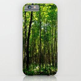 Green breeze iPhone Case