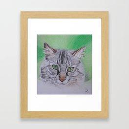 Striped cat Framed Art Print