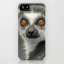 LEMUR PORTRAIT iPhone Case