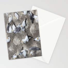 Gannet Colony Stationery Cards