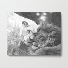 Lion in Love Valentine's Day Metal Print