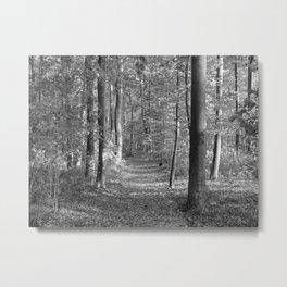 """Autumn 4941""  Metal Print"