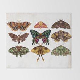 Moth Wings III Throw Blanket