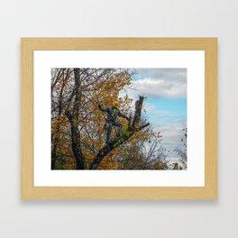 Tree Surgeon Framed Art Print
