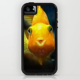 Funny goldgish iPhone Case