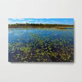 Point Pelee National Park Wetlands, ON Canada Metal Print