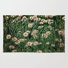 Daisy Carpet Dark Rug
