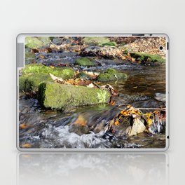 Lumsdale stream Laptop & iPad Skin
