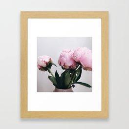 peonies1 Framed Art Print