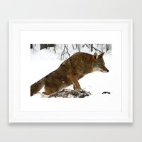 coyote Framed Art Prints featuring Coyote by tracy-Me