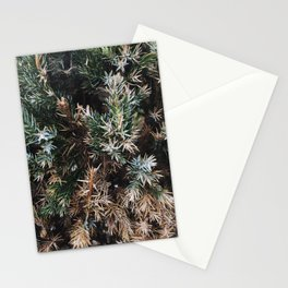 Browning Bush Stationery Cards