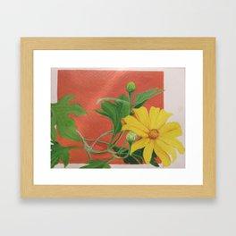 Winter blooming sun flower Framed Art Print