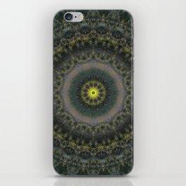 181 - Untitled iPhone Skin