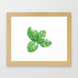 Watercolor Basil Framed Art Print