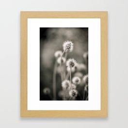 >>> Framed Art Print
