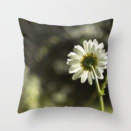 Daisy Light Throw Pillow