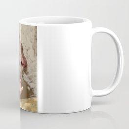 Smooth Coated Otter  Coffee Mug