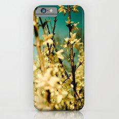 Wild Abandon iPhone 6s Slim Case