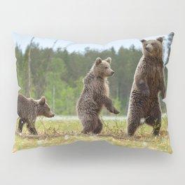 Three bears Pillow Sham