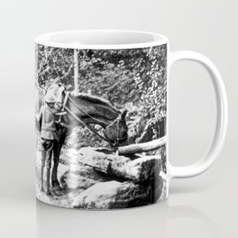 Vintage Adirondacks: The Roadside Watering Trough Coffee Mug