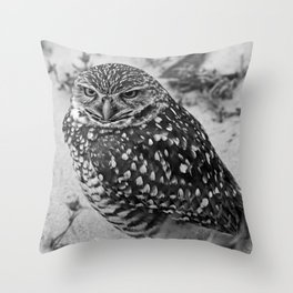 Searching for Clarity Throw Pillow