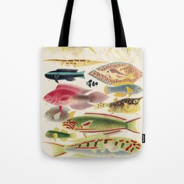 Vintage Fish of the Great Barrier Reef Tote Bag