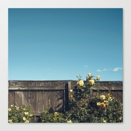 Yellow flowers over a wooden fence Canvas Print