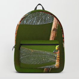 Dragonfly Insect Animal Backpack
