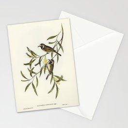 birds on a vine Stationery Cards
