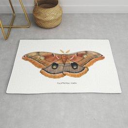 Polyphemus Moth (Antheraea polyphemus) II Rug