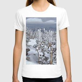 Mt Rose T-shirt