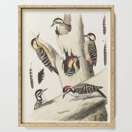 Naturalist Woodpeckers Serving Tray