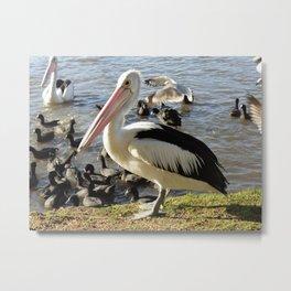 Bird Gatherings Metal Print