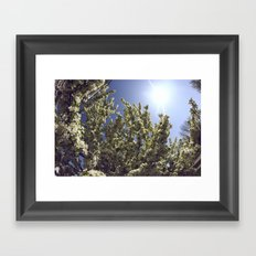 Green Breeze Framed Art Print