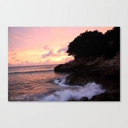 Beach at St. Maartin Canvas Print