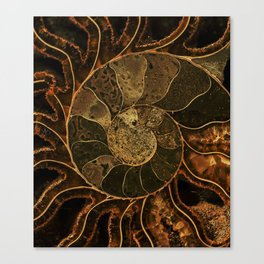 Earth treasures Canvas Print