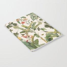 Tropicana Notebook