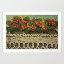 Begonias wc161104a Art Print
