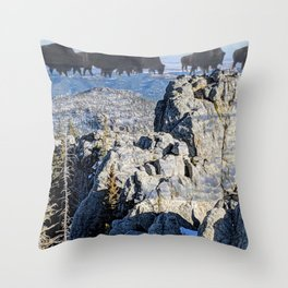 Pte Oyate at Blak Elks Peak Throw Pillow