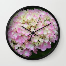 Pink and White Hydrangea  Wall Clock