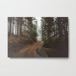 Costal Road, OR  Metal Print