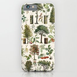 Adolphe Millot - Arbres B - French vintage botanical poster iPhone Case