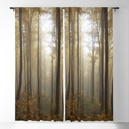 Lost in the forest Blackout Curtain