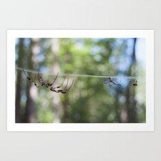 Spider 1 | Picture C Art Print
