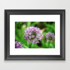 Wildflower Framed Art Print