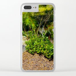 Fresh plants on a tree stump. Clear iPhone Case