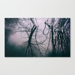 Tree in Cloud Reflection Canvas Print